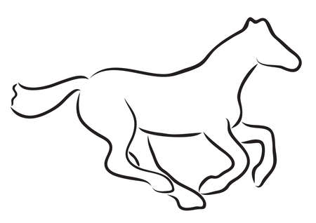 steed: Vector illustration of a horse  Illustration
