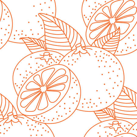 Vector seamless pattern of oranges Vectores