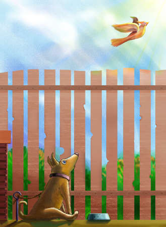 free plate: A tethered dog sitting before a bowl of food and looking surprisely at a freedomly flying bird. Dog is surprised and shocked.May be she dreams to fly away and be free one day. This illustration was painted at Corel painter at a very high quality