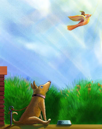 free plate: A tethered dog sitting before a bowl of food and looking surprisely at a freedomly flying bird. Dog is surprised and shocked.May be she dreams to fly away and be free one day.