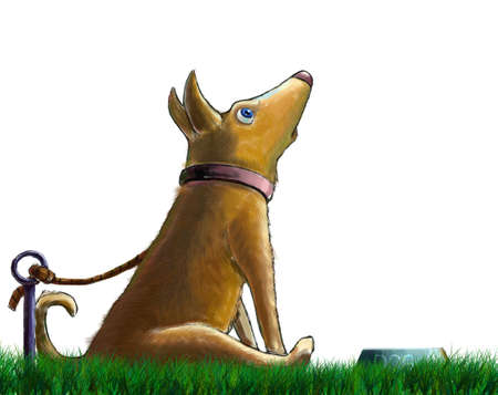 free plate: An illustration of a surprised dog sitting before a bowl of food