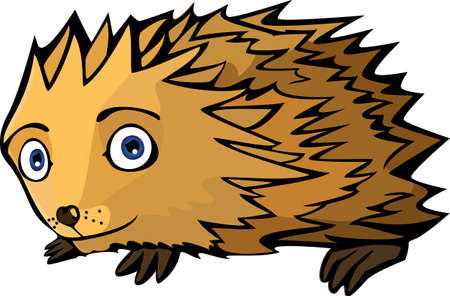 A vector illustration of a little funny Hedgehog. Can be recolored or scaled without problems and quality loss Vector