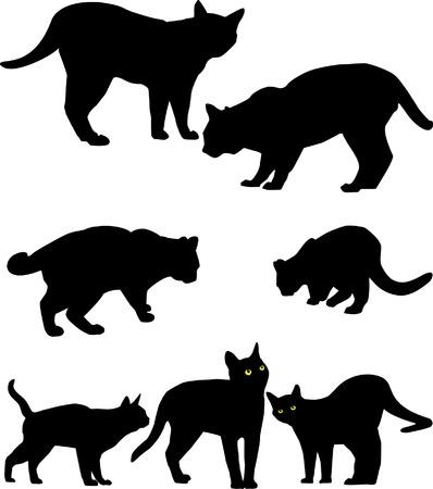 siluet: black siluetsof standing cats