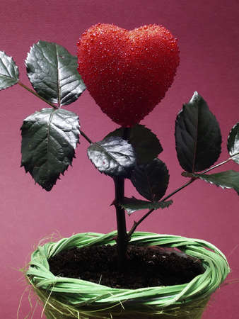 Heart in pot Stock Photo - 304793