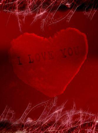 I love You Stock Photo - 304788