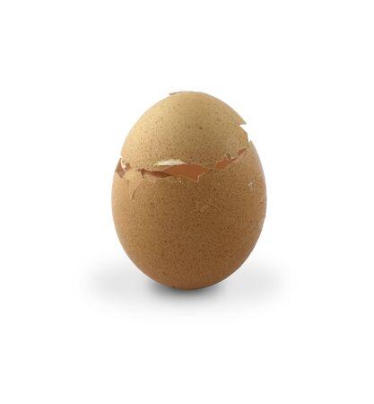 Egg Zdjęcie Seryjne