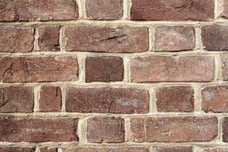 squalor: brick
