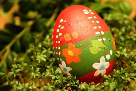 eggs Zdjęcie Seryjne - 440721