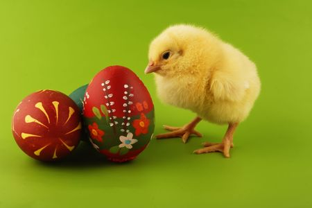 Easter chicken and Easter egg Stock Photo