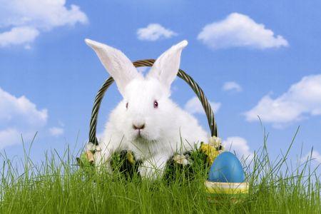 Wielkanoc. W królik i easter egg z nieba tle Zdjęcie Seryjne - 883035