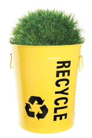 Recycling concept. Green grass growing out of recycle bin, showing the recycle sign  icon. Yellow recycling bucket isolated on white. photo
