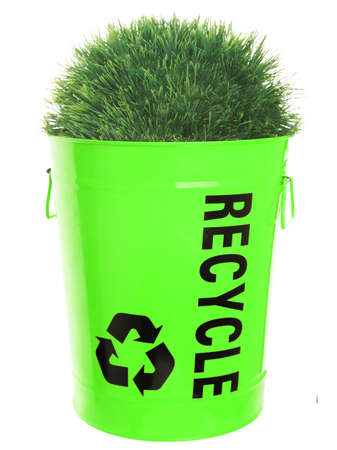 Recycling concept. Green grass growing in recycle basket. Isolated on white background. photo