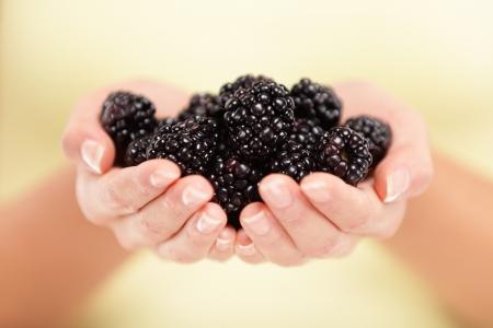 Blackberries  Woman showing blackberries in closeup  Healthy food and blackberry concept