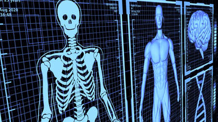 8K 3D Rendered HUD Muscular anatomical man Body, Brain, and DNA including Skeleton in body analysis concept background ver.2