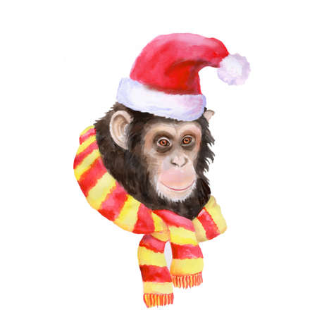 santa clause hat: Watercolor portrait of monkey in Santa Clause hat and cool scarf isolated on white background. Hand drawn chinese zodiac symbol of New Year 2016. Cute modern chimpanzee. Greeting card. Clip art.
