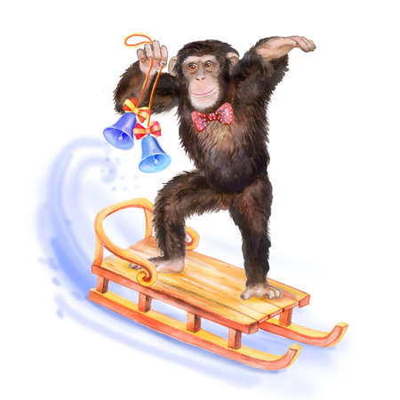 china watercolor paint: Close up watercolor portrait of monkey with man butterfly skating on the sledge with jingle bells in the hand.  Christmas concept. Symbol of the 2016. For greeting cards, posters, banners. Hand drawn