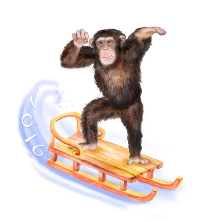 china watercolor paint: Close up watercolor portrait of monkey skating on the sledge.  Christmas concept. Cute chimpanzee enters to the New Year. Symbol of the 2016 year. For greeting cards, posters, banners. Hand drawn Stock Photo