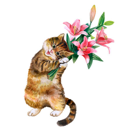 bouqet: Cute watercolor card with cat and flowers isolated on white background. Lovely kitten with lilies. Ideal for  Valentins day, Birthday, Wedding invitation poster. Beatiful spring bouqet. Stock Photo