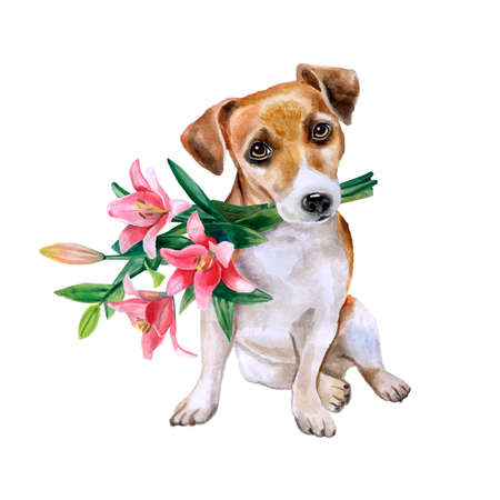 valentin's: Dog with flowers. Cute puppy with romantic bouquet. Flower backdrop.  Watercolor hand drawn illustration. Greeting card design. Invitation poster to wedding, birthday. Valentins day.