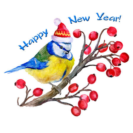 guelder rose: Watercolor titmouse  on the branch of  guelder-rose in a Santa Clause hat  on white background. New Year and Christmas. T-shirt graphics. Viburnum. Snowball tree. For fashion print, poster, textile Illustration