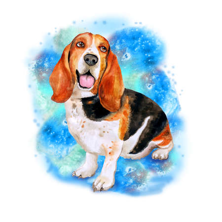 add text: Watercolor portrait of French, English or British basset hound breed dog isolated on blue background. Hand drawn sweet pet. Bright colors, realistic look. Greeting card design. Clip art. Add text