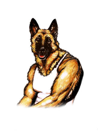 alsatian: Watercolor portrait of pumped up German Shepherd breed dog isolated on white background. Muscle jock dog. Hand drawn comic card design. Comics style hero. Clip art. You can change or add your text