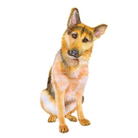 Aquarel portret van de Duitse herder ras hond geïsoleerd op een blauwe en groene achtergrond. Hand getrokken lief huisdier. Heldere kleuren, realistische look. Wenskaart design. Clip art. Voeg uw tekst Stockfoto