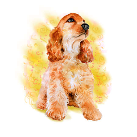 cocker spaniel: Watercolor portrait of red English, American cocker spaniel  breed dog isolated on yellow background. Hand drawn sweet pet. Bright colors, realistic look. Greeting card design. Clip art. Add your text
