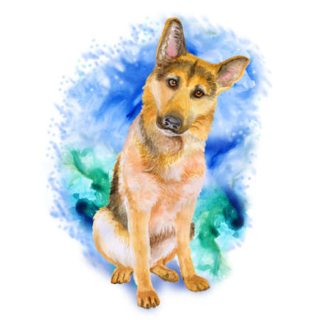 alsatian: Watercolor portrait of German Shepherd breed dog isolated on blue and green background. Hand drawn sweet pet. Bright colors, realistic look. Greeting card design. Clip art. Add your text