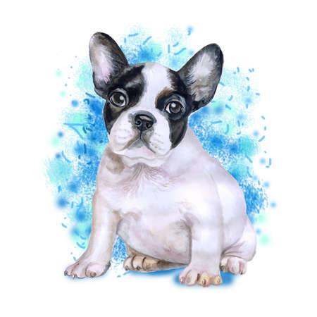 Retrato da aquarela do cão branco e preto da raça do buldogue francês isolado no fundo azul. Animal de estimação doce desenhada de mão. Cores brilhantes, olhar realista. Design de cartão Clip art. Adicione seu texto Foto de archivo