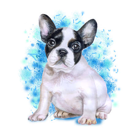 animal origin: Watercolor portrait of white and black French bulldog breed dog isolated on blue background. Hand drawn sweet pet. Bright colors, realistic look. Greeting card design. Clip art. Add your text Stock Photo