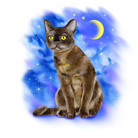 bombay: Watercolor portrait of American Bombay shorthair cat isolated on blue night moon background. Hand drawn sweet home pet. Bright colors, realistic look. Yellow eyes. Greeting card design. Clip art Stock Photo