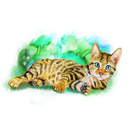serengeti: Watercolor portrait of serengeti cat with dots, stripes isolated on green background. Hand drawn detailed sweet home pet. Bright colors, realistic design. Greeting card design. Clip art. Add your text