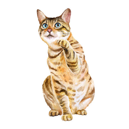 Watercolor portrait of bengal cute cat with dots, stripes isolated on white background. Hand drawn sweet home pet. Bright colors, realistic design. Greeting card design. Clip art. Place for your text