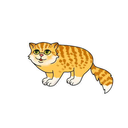 bushy: Watercolor cartoon image of funny red and yellow long hair cat with bushy tail, green eyes, stripes isolated on white background. Hand drawn sweet home pet. Greeting card design. Clip art. Add text Stock Photo