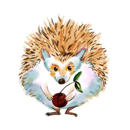 Cartoon hedgehog drawn in cartoon style. Hedgehog boy hipster with a cherry. Fashion animal  watercolor illustration. Circus character. Lovely eyes. Poster for childrens comic. Add your text. Stock Photo