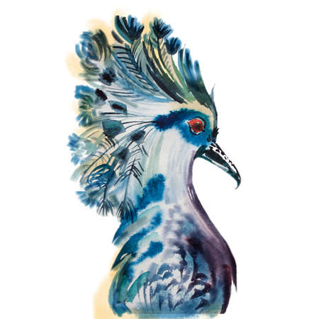 flora fauna: Hand drawn parrot head. Portrait of macaw watercolor sketch. Colorful bird.  Flora and fauna concept. Cute exotic bird. Breeds of parrots like Amazon, Macaw, Cockatoo and Aratinga.  Fashion ara