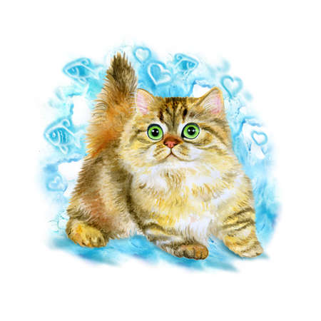 minuet: Watercolor portrait of Minuet or napoleon cute kitten isolated on blue background. Hand drawn detailed sweet home pet. Bright colors, realistic look. Greeting card design. Clip art. Add your text