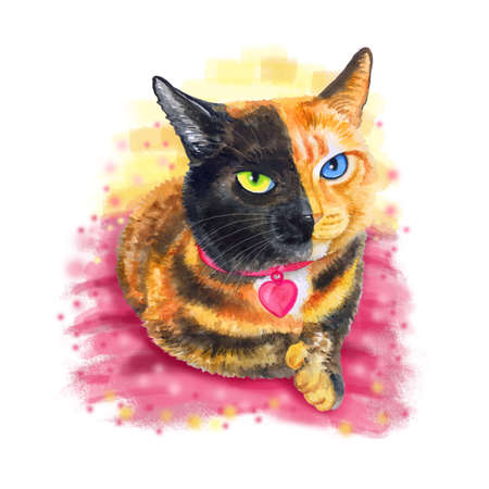 faced: Watercolor portrait of bifacial, two-faced cat isolated on pink background. Hand drawn detailed sweet home pet. Bright colors, realistic look. Greeting card design. Clip art. Add your text