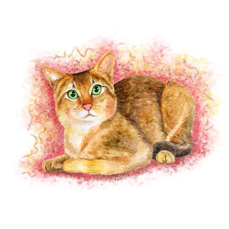 prionailurus: Watercolor portrait of rare exotic Chausie jungle cat isolated on pink background. Hand drawn detailed sweet home pet. Bright colors, realistic look. Greeting card design. Clip art. Add your text