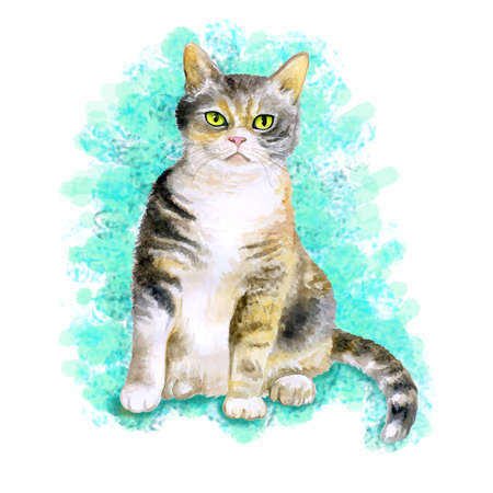 wirehair: Watercolor portrait of rare exotic American wirehair cat isolated on turquoise background. Hand drawn detailed sweet home pet. Bright colors, realistic look. Greeting card design. Clip art. Add text
