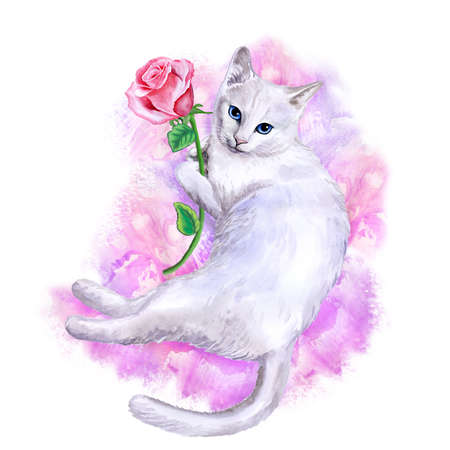 exotic pet: Watercolor portrait of rare exotic Khao Manee, Diamond Eye cat isolated on pink background with rose. Hand drawn detailed sweet home pet. Bright colors, realistic look. Greeting card design. Clip art