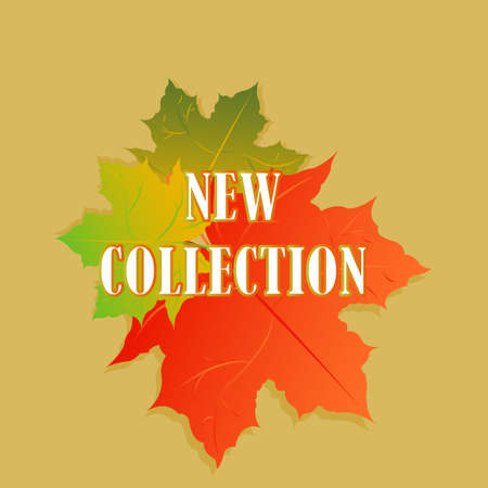 new collection: Promotion of the new collection. Special offer. Best price. Big Autumn sale. Vector illustration with colorful autumn leaves