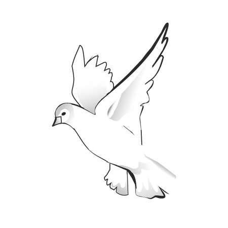비행 비둘기 실루엣.