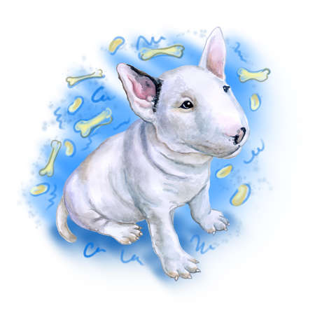 puppy isolated: Watercolor portrait of white English Bull terrier, the white cavalier breed dog puppy  isolated on blue background with bones. Hand drawn realistic sweet pet. Greeting card design. Clip art. Add text