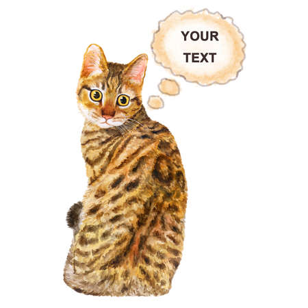 spangled: Watercolor portrait of California Spangled cute cat with dots, stripes isolated on white background. Hand drawn sweet home pet. Bright realistic colors. Greeting card design. Clip art. text mockup