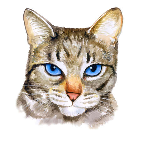 impudent: Watercolor colseup portrait of ojos azules breed cat with blue eyes isolated on white background. Hand drawn sweet home pet. Bright colors, realistic design. Greeting card design. Clip art. Add text