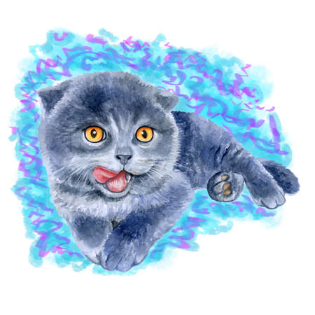 lick: Watercolor portrait of scottish fold cute kitten lick oneself isolated on blue background. Hand drawn sweet home pet. Bright colors, realistic design. Greeting card design. Clip art. Place for text Stock Photo