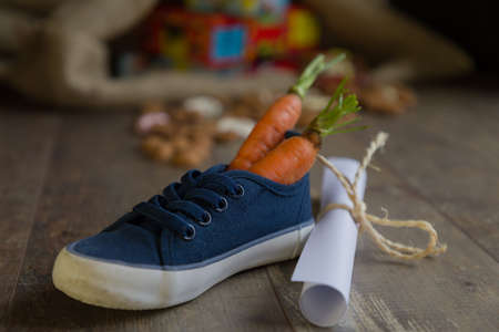A kid places his shoe with carrots for Amerigo, the horse of Sinterklaas and a drawing for Sinterklaas, Then he dreams of a bag full of presents and candy.