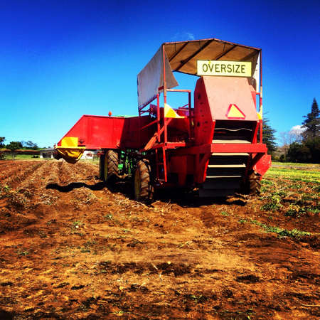 deere: Potato harvesting in Pukekohe New Zealand